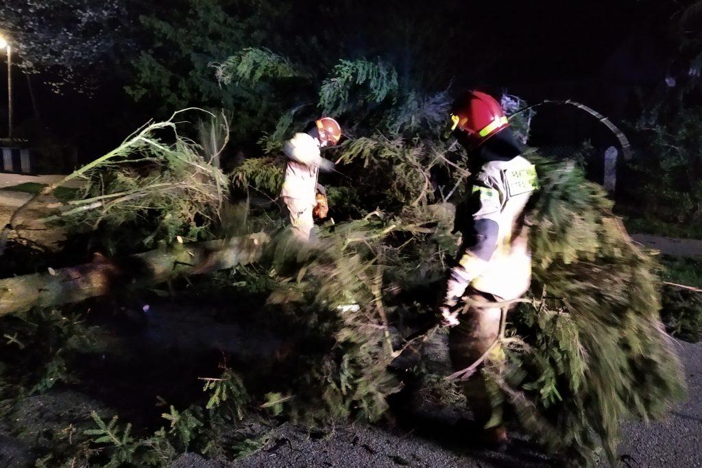 Porywisty wiatr i wiele interwencji strażaków w majówkę (ZDJĘCIA) - Zdjęcie główne