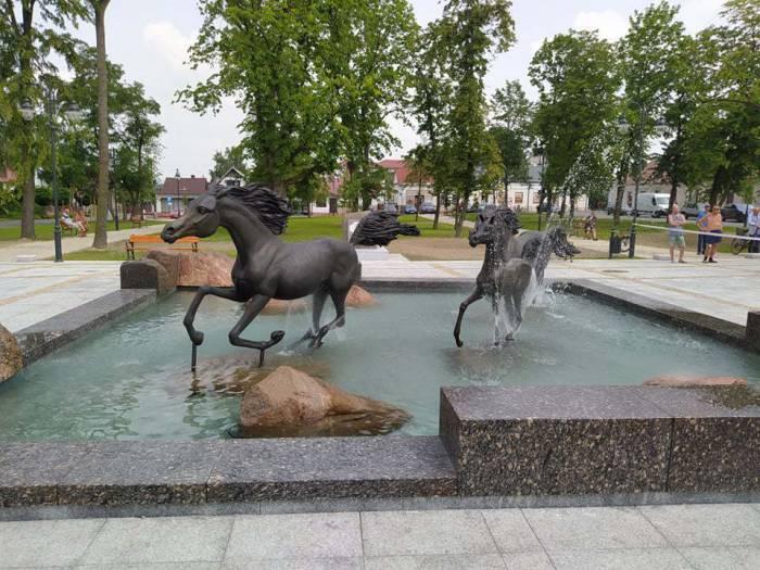 Pędzą konie... po betonie. Płyną drwiny z całego kraju - Zdjęcie główne