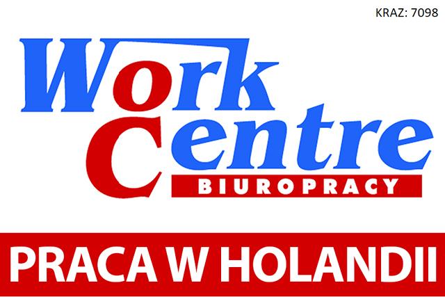 Legalna praca w Holandii na wyciągnięcie ręki - Zdjęcie główne