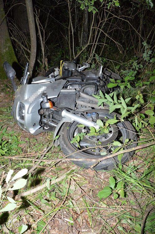 Tuczna: Kierowca motocykla uderzył w łosia - Zdjęcie główne