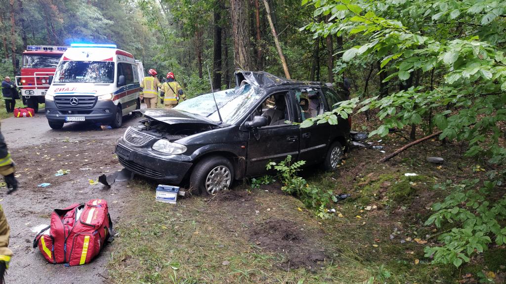 Gmina Michów: Chrysler uderzył w drzewo. Pasażerowie ranni, kierowca zbiegł  - Zdjęcie główne