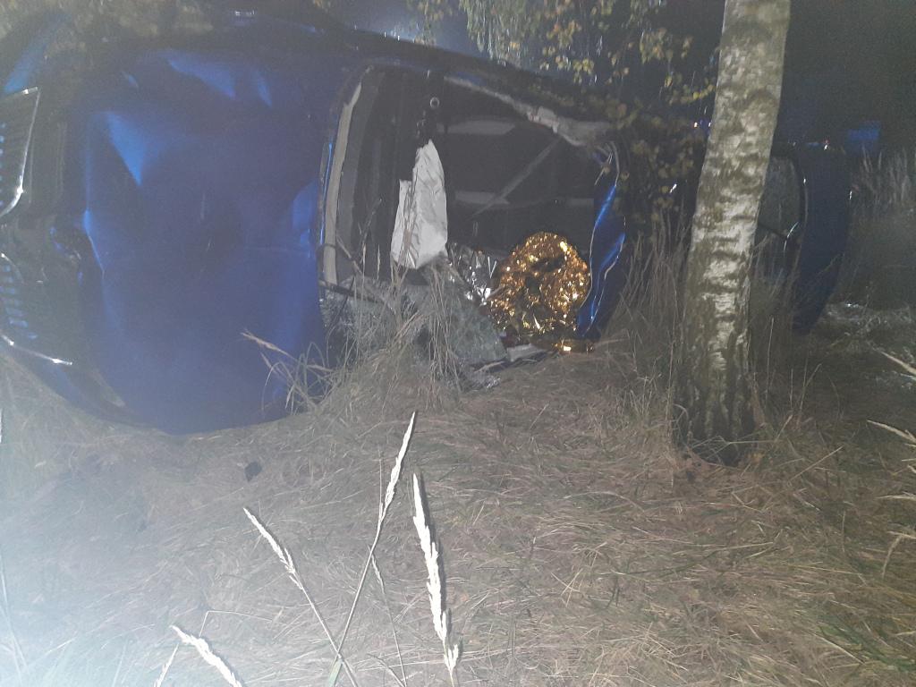 Śmiertelny wypadek w Annówce. Kierowca zginął w zderzeniu z łosiem - Zdjęcie główne