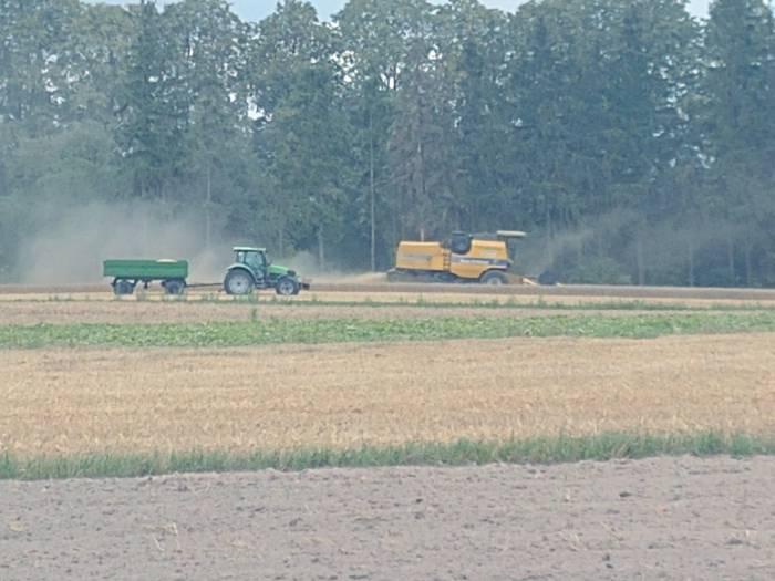Podatek rolny przeważnie bez zmian, w Sernikach drożej - Zdjęcie główne