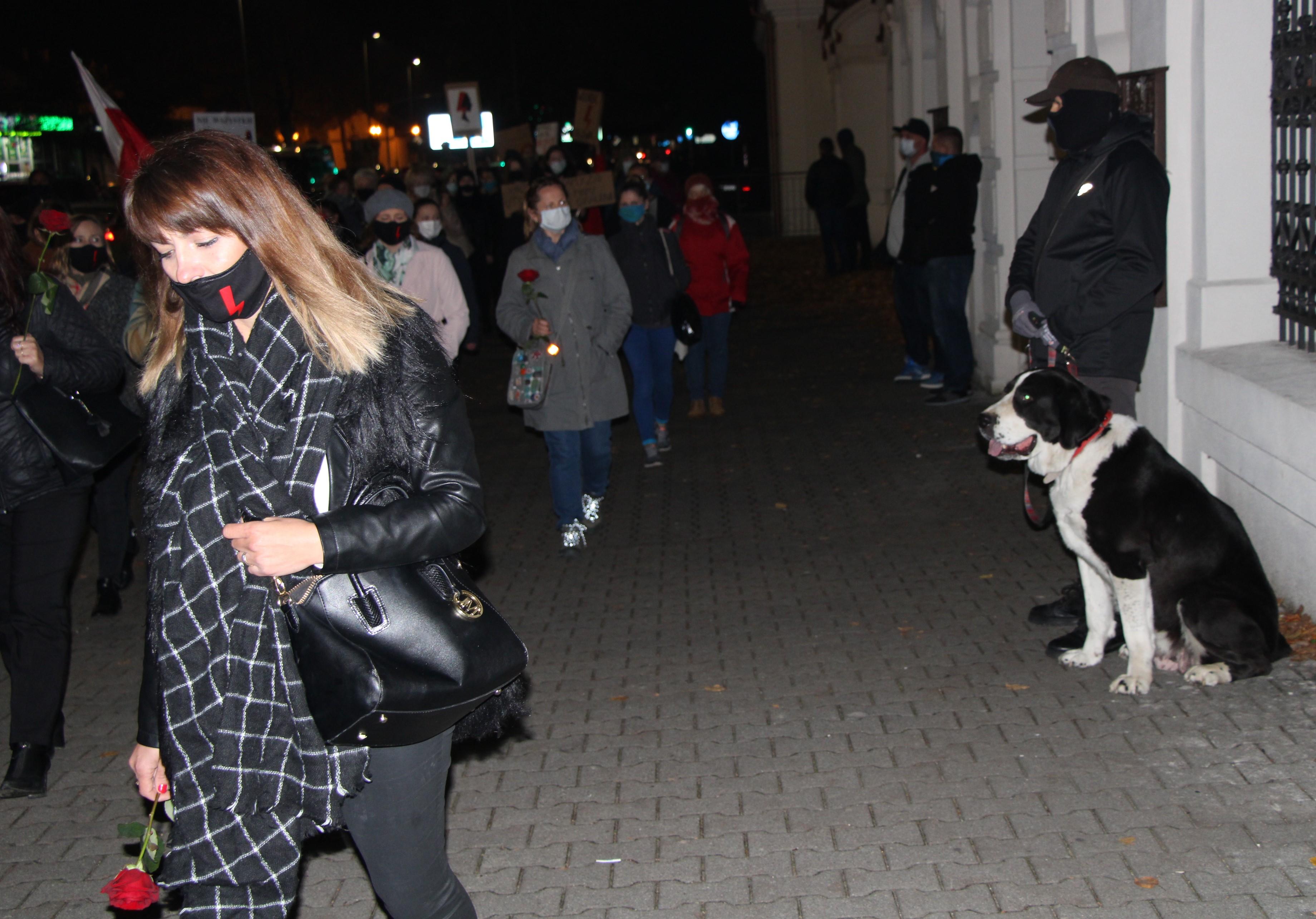Strażnicy z psem pilnowali kościoła św. Anny. Protest w Lubartowie przeszedł spokojnie - Zdjęcie główne