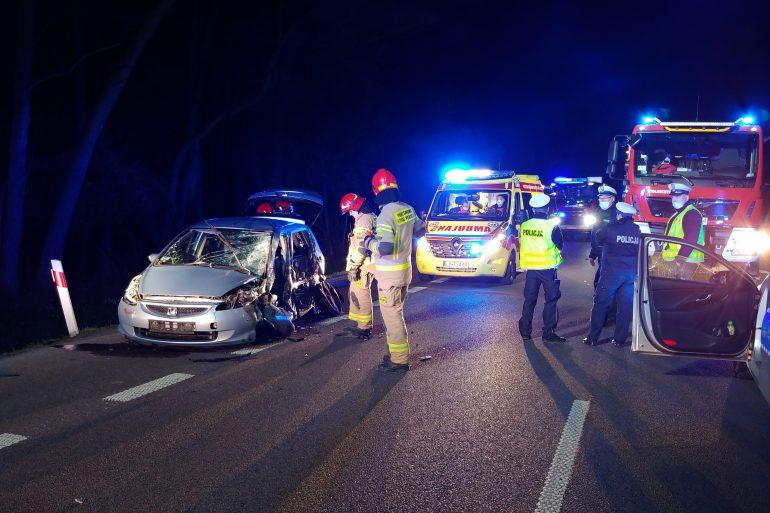 Wtargnięcie zwierzęcia na jezdnię przyczyną wypadku - Zdjęcie główne