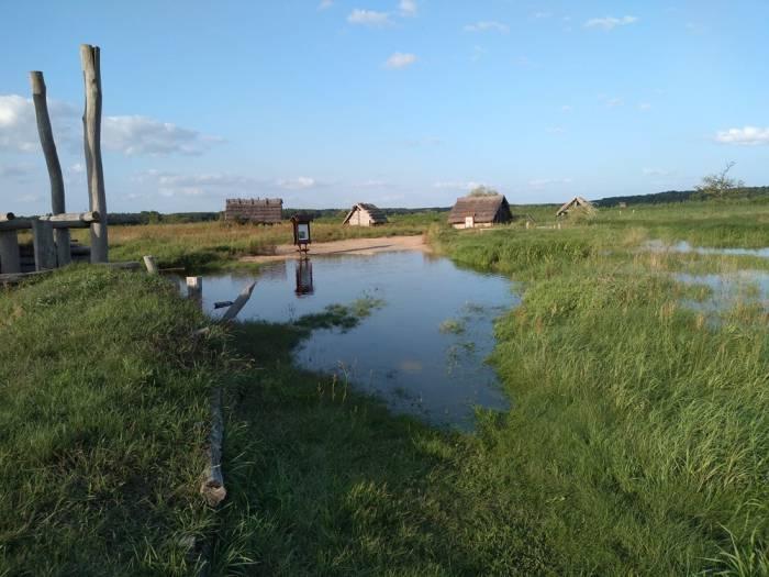 Grodzisko w Żmijowiskach zamknięte dla zwiedzających - Zdjęcie główne