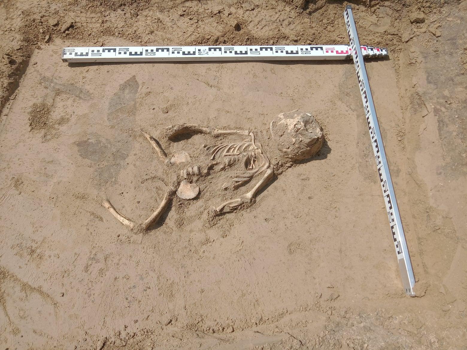Niezwykłe odkrycie w Kazimierzu Dolnym. Znaleziono ludzkie szczątki - Zdjęcie główne