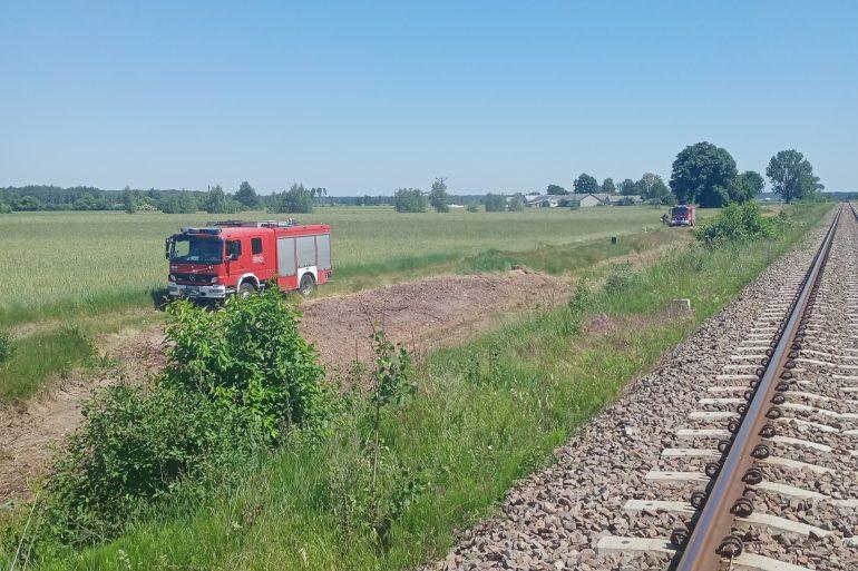 Pożar przy torach kolejowych w Zakrzewie  - Zdjęcie główne