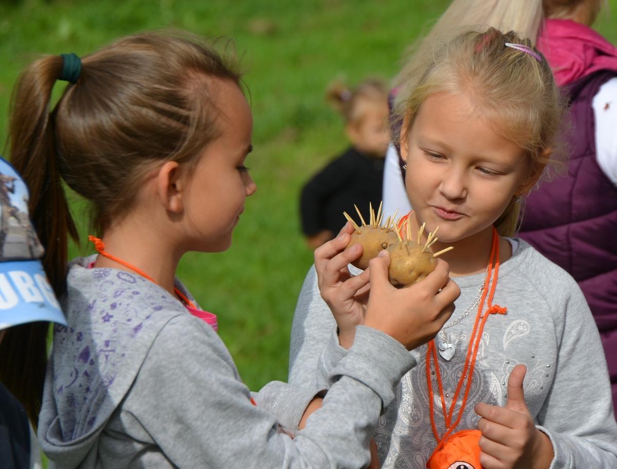26 września zajęcia edukacyjne i Święto Pieczonego Ziemniaka - Zdjęcie główne