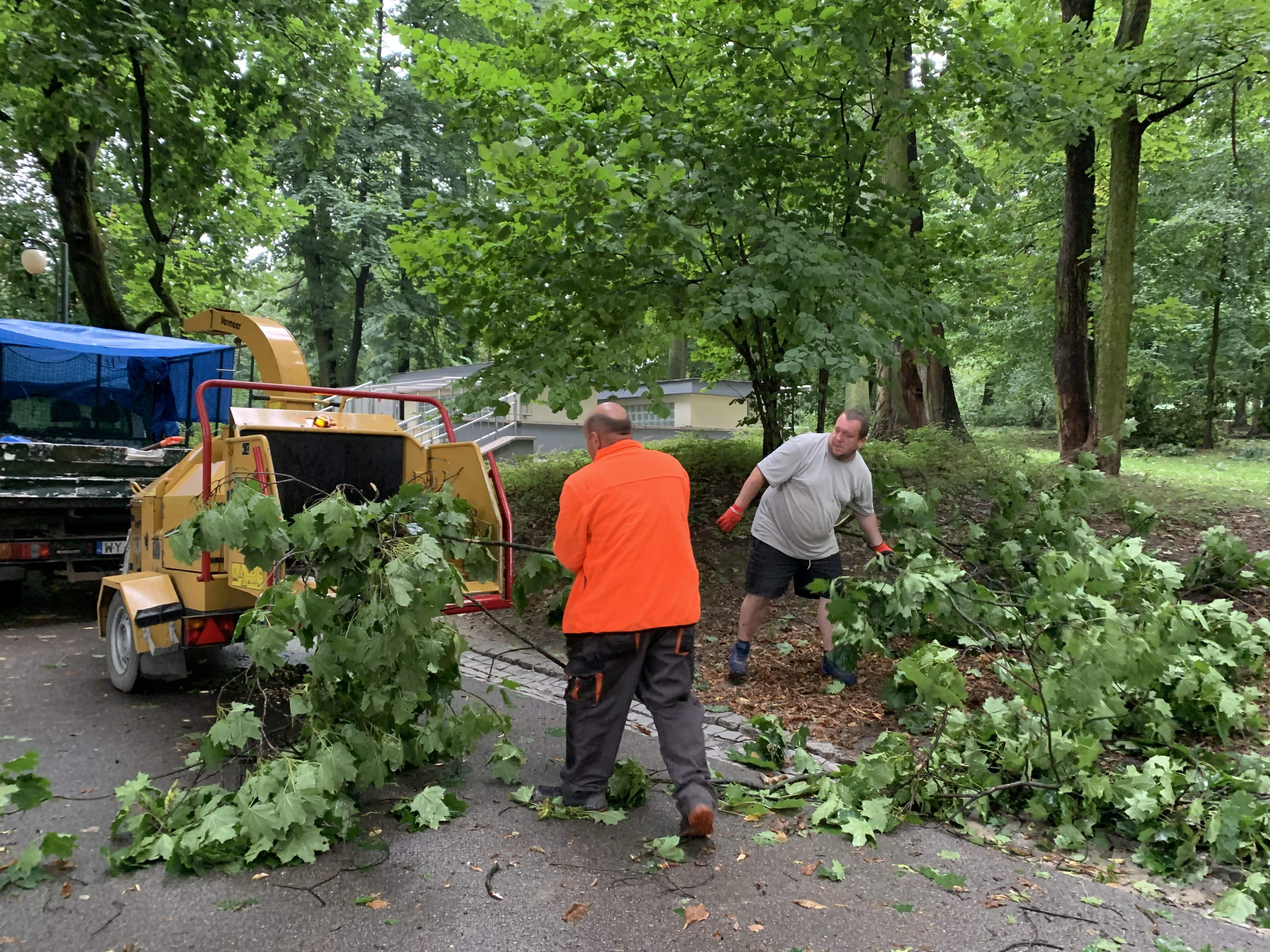 Lublin: Przez miasto przeszła burza w nocy. Trwa sprzątane i liczenie strat [GALERIA] - Zdjęcie główne