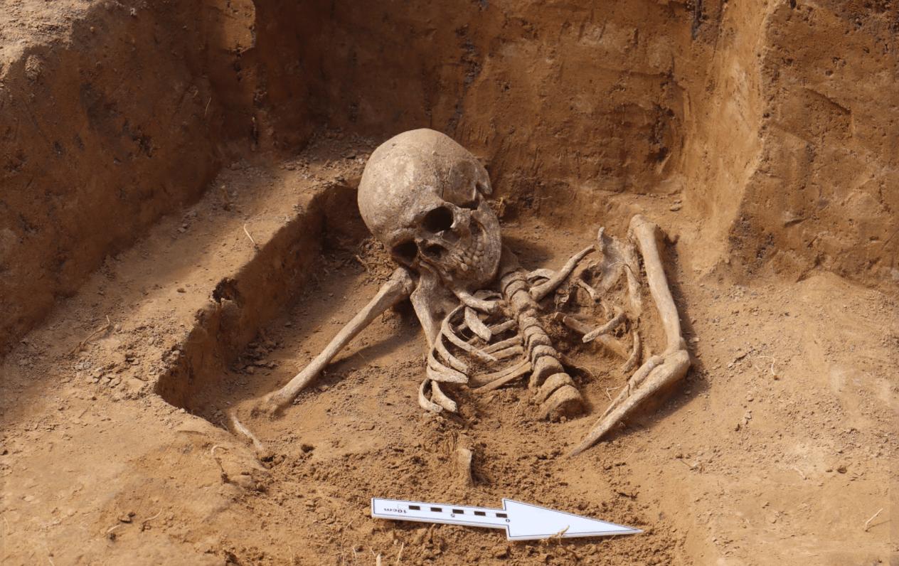 Kolejne szczątki znalezione na budowie przy ul. Spokojnej w Lublinie - Zdjęcie główne