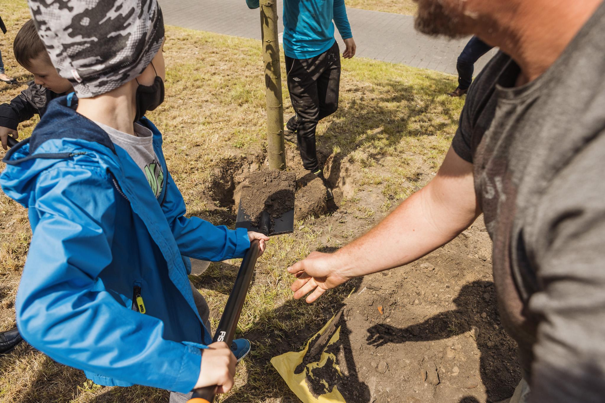 Lublin: mieszkańcy kolejnych dzielnic będą sadzić drzewa. W ramach Budżetu Obywatelskiego - Zdjęcie główne