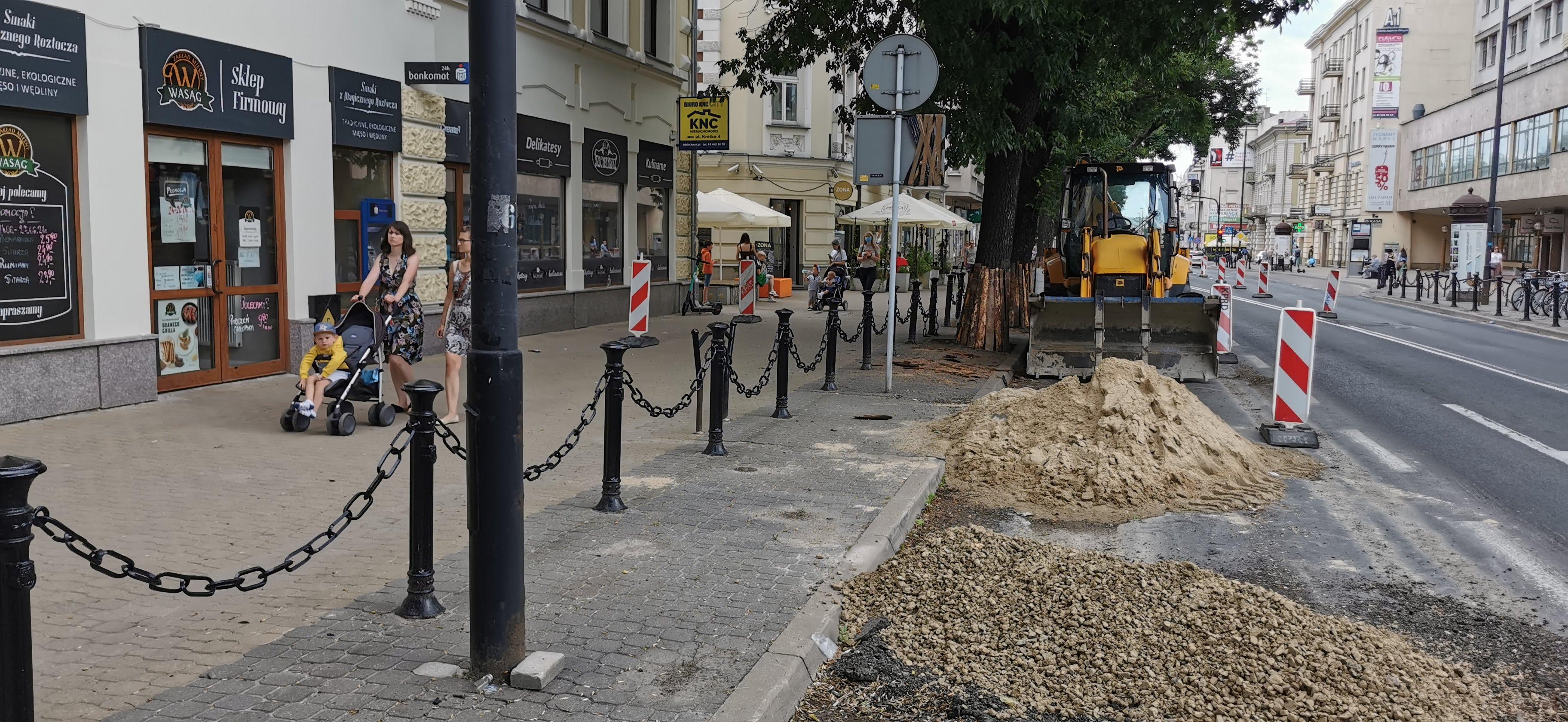 Lublin: ekolodzy i mieszkańcy chcą więcej zieleni w centrum miasta - Zdjęcie główne
