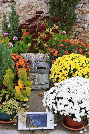 Lubelscy radni apelują o pomoc dla sprzedawców przy cmentarzach - Zdjęcie główne