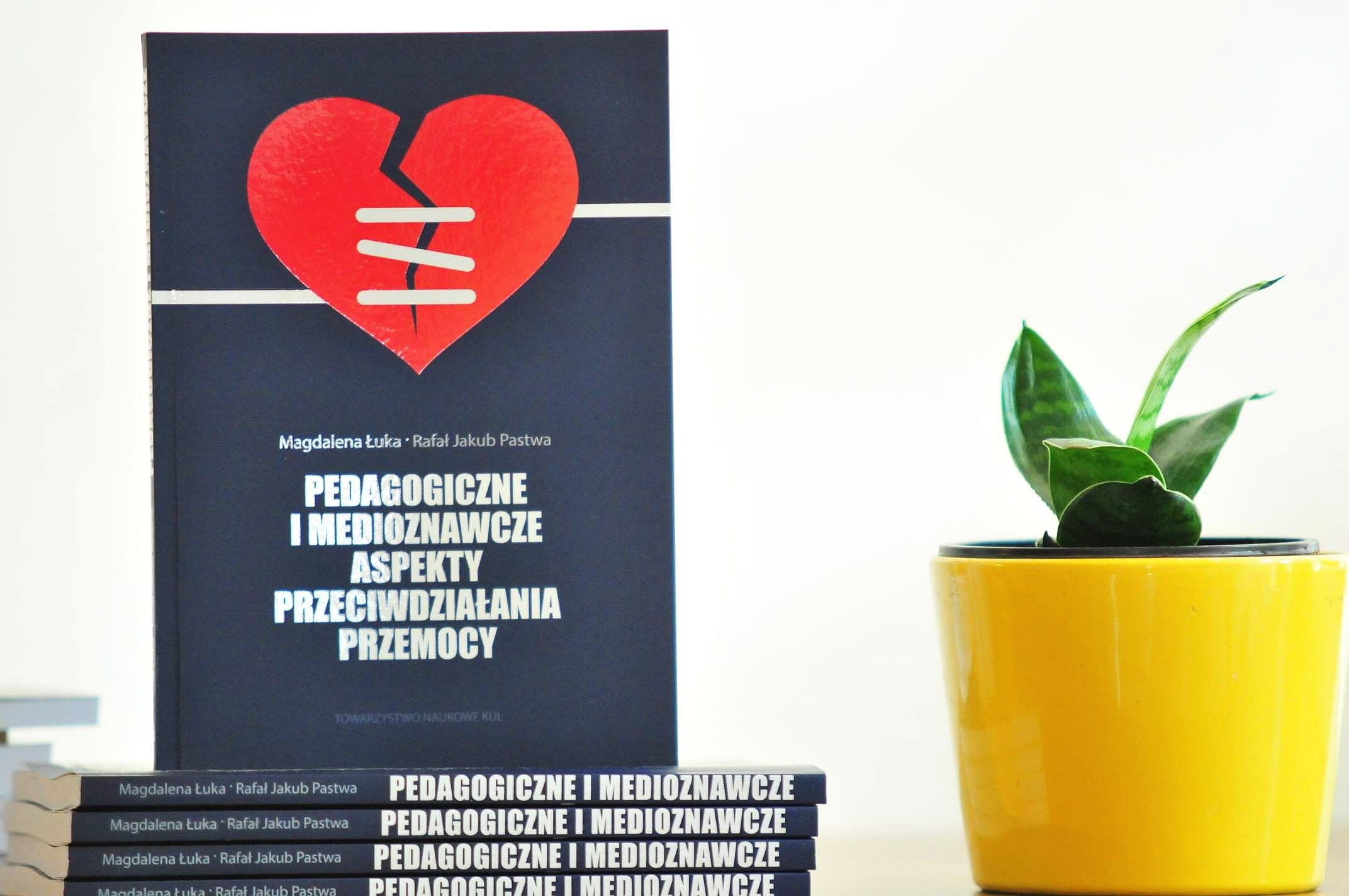 Lublin: Naukowcy KUL wydali książkę. Dotyczy przemocy - Zdjęcie główne