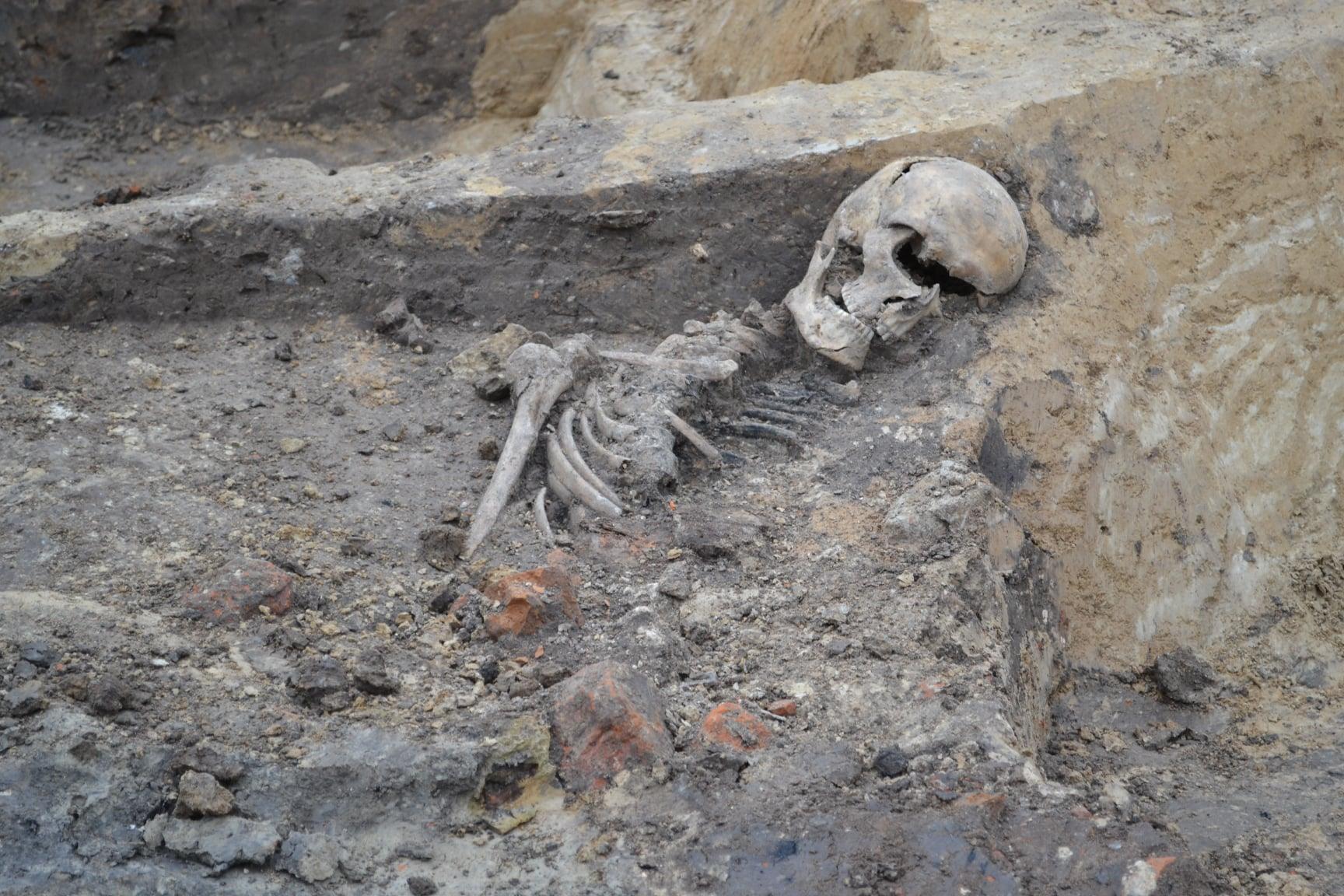 Archeolodzy znaleźli ludzki szkielet na lubelskiej budowie - Zdjęcie główne