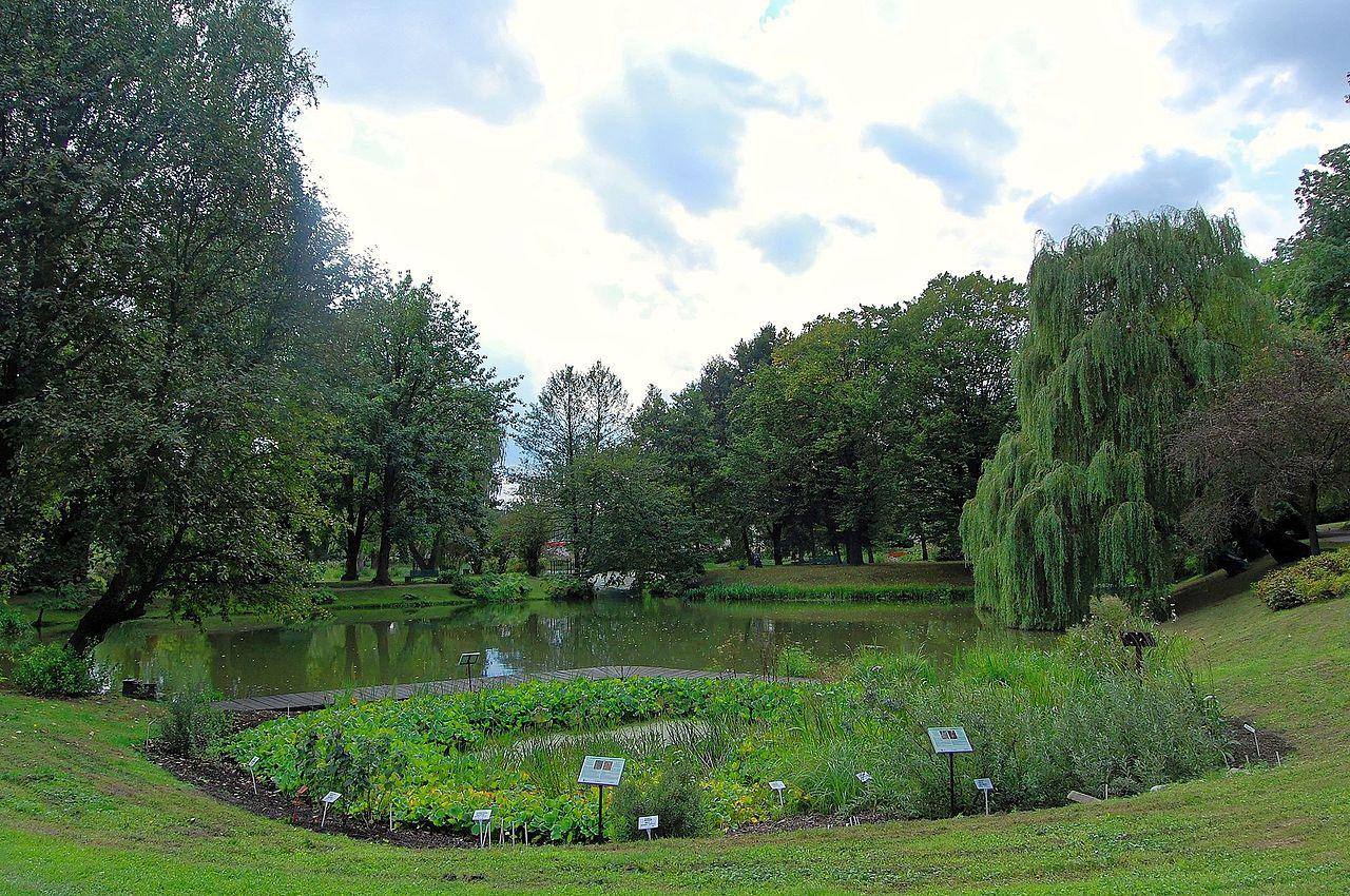 Ogród Botaniczny UMCS otwiera się na zwiedzających - Zdjęcie główne