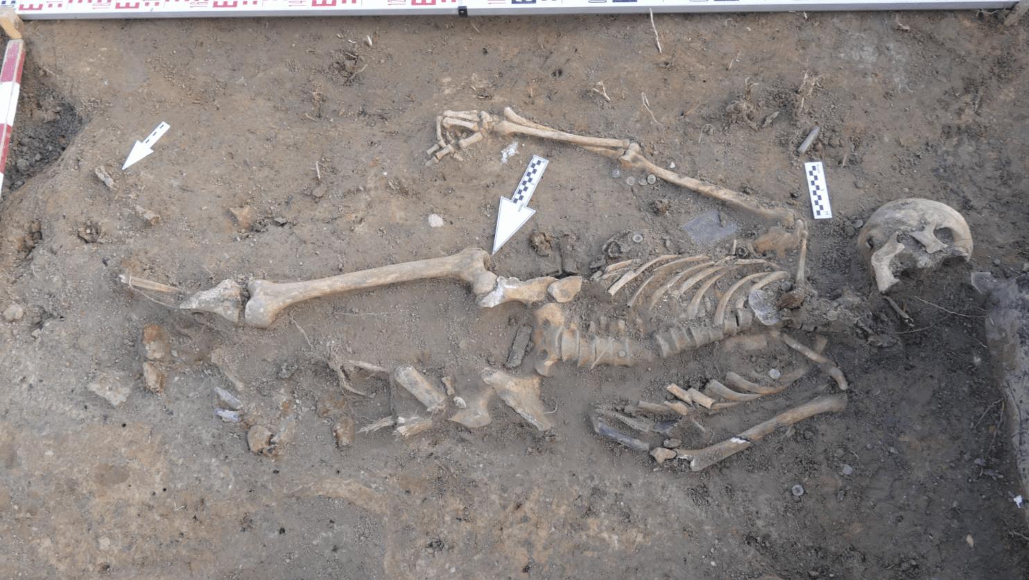 Odkrycie z czasów II wojny światowej na budowie w Lublinie. Znaleziono szkielety i amunicję - Zdjęcie główne