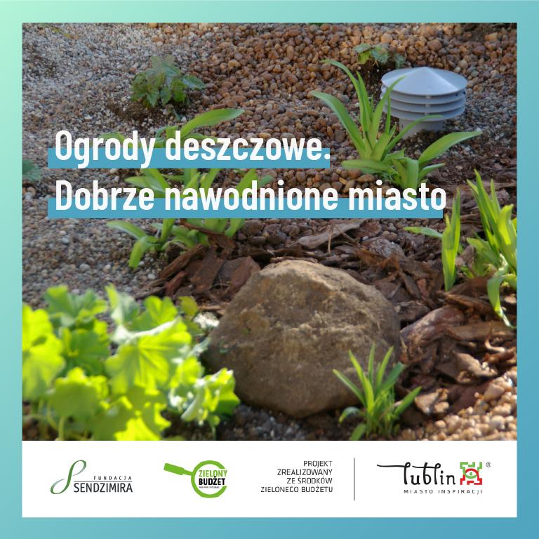 Lublin: Powstaną ogrody deszczowe. Pomogą w tym mieszkańcy - Zdjęcie główne