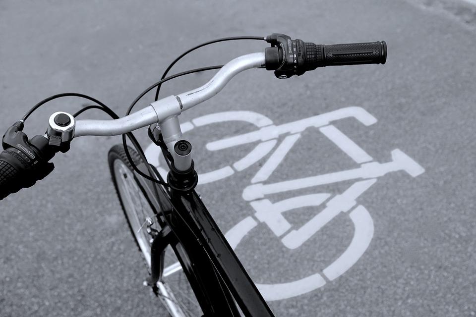 Znalazła gotówkę rozrzuconą na ścieżce rowerowej - Zdjęcie główne