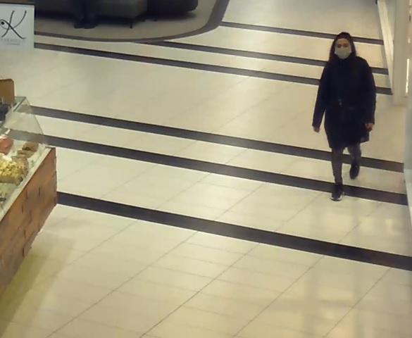 Policja szuka złodziejki. Okradła klientkę galerii handlowej w Lublinie - Zdjęcie główne