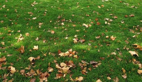 Pogoda w Twojej okolicy. Prognoza na wtorek 5 października. - Zdjęcie główne