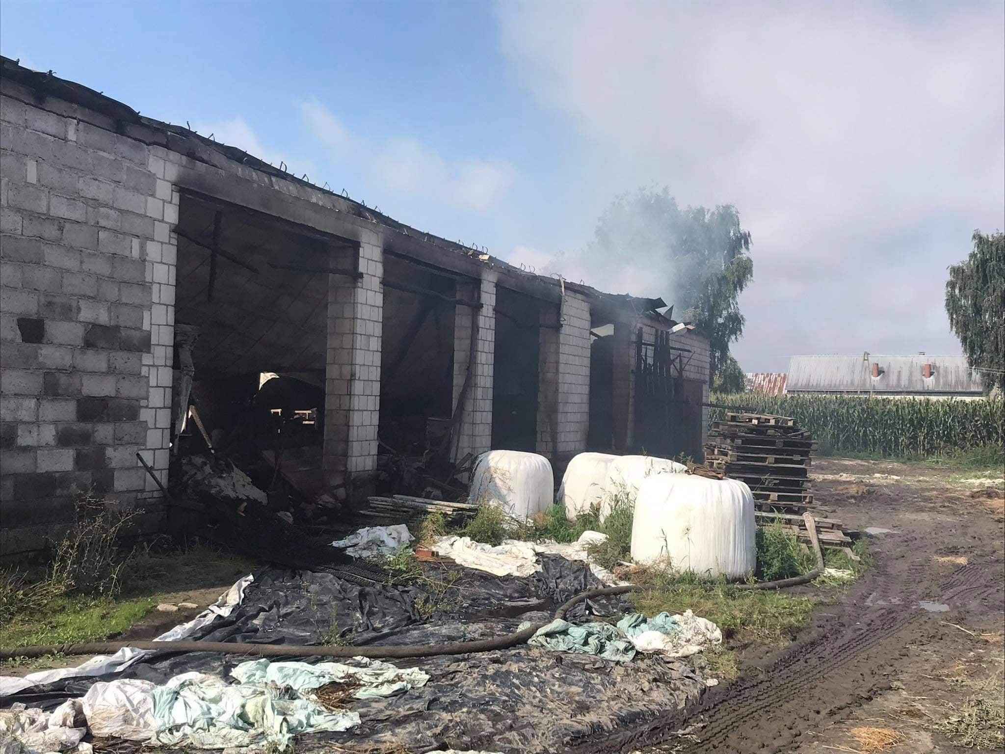ŁUKÓW. Strażacy podsumowali bilans gigantycznego pożaru  - Zdjęcie główne