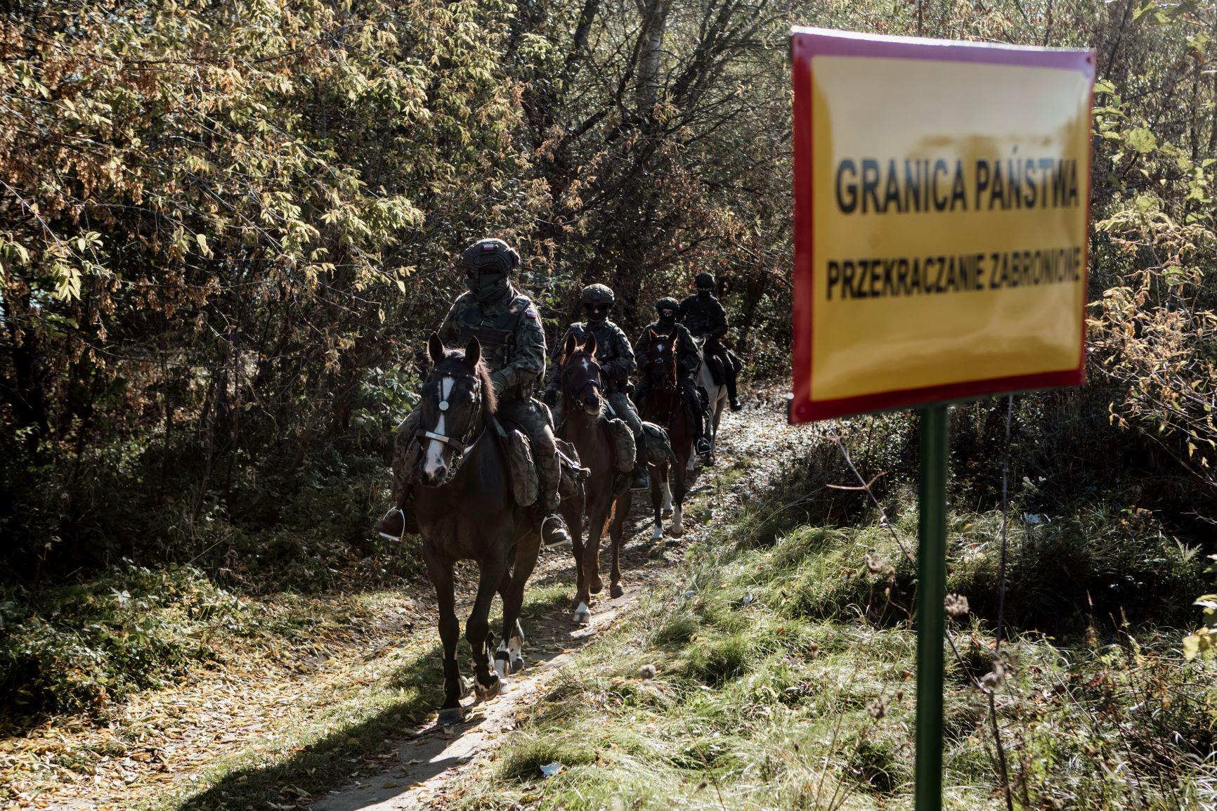 Województwo lubelskie: Terytorialsi na koniach patrolują tereny objęte stanem wyjątkowym - Zdjęcie główne