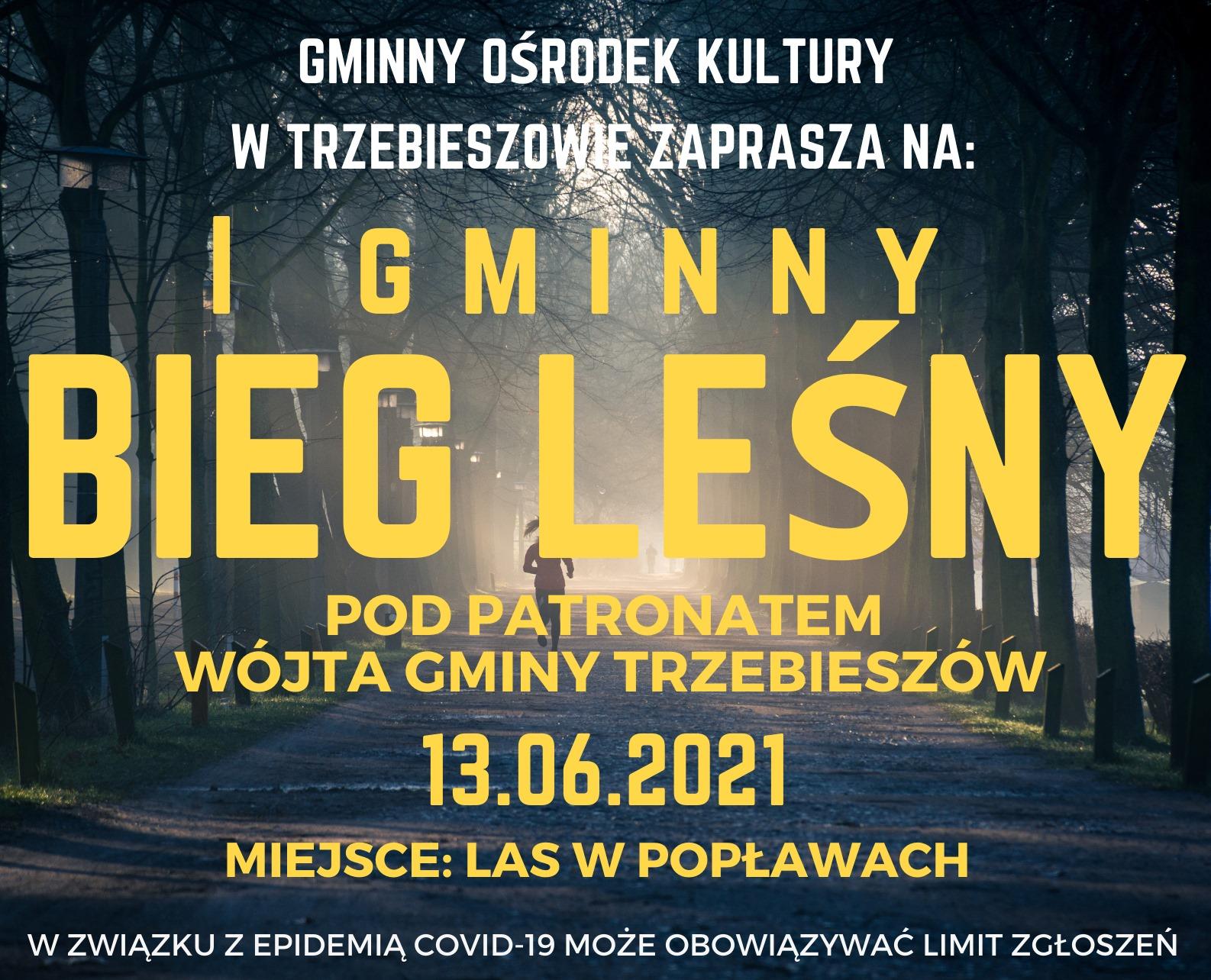 I Gminny Bieg Leśny w Popławach - Zdjęcie główne