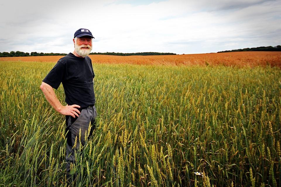 POWIAT Rolniku spiesz się po dopłaty  - Zdjęcie główne