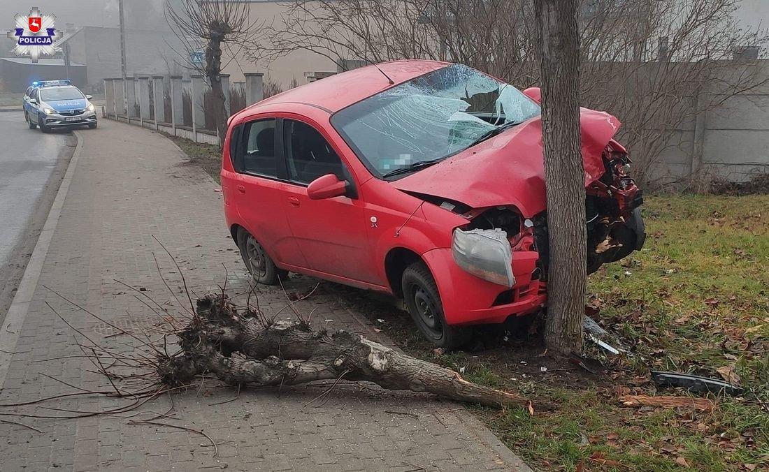 STOCZEK ŁUKOWSKI: Miała 2,5 promila. Wypadła z zakrętu i uderzyła w drzewo  - Zdjęcie główne