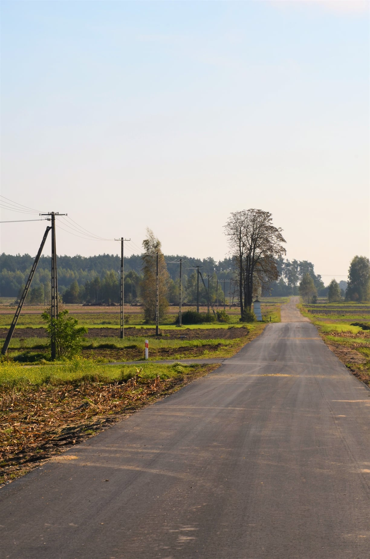 Droga w Okrzei przebudowana  - Zdjęcie główne