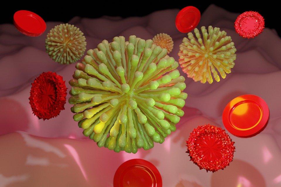 Ponad 1500 zakażeń koronawirusem - Zdjęcie główne