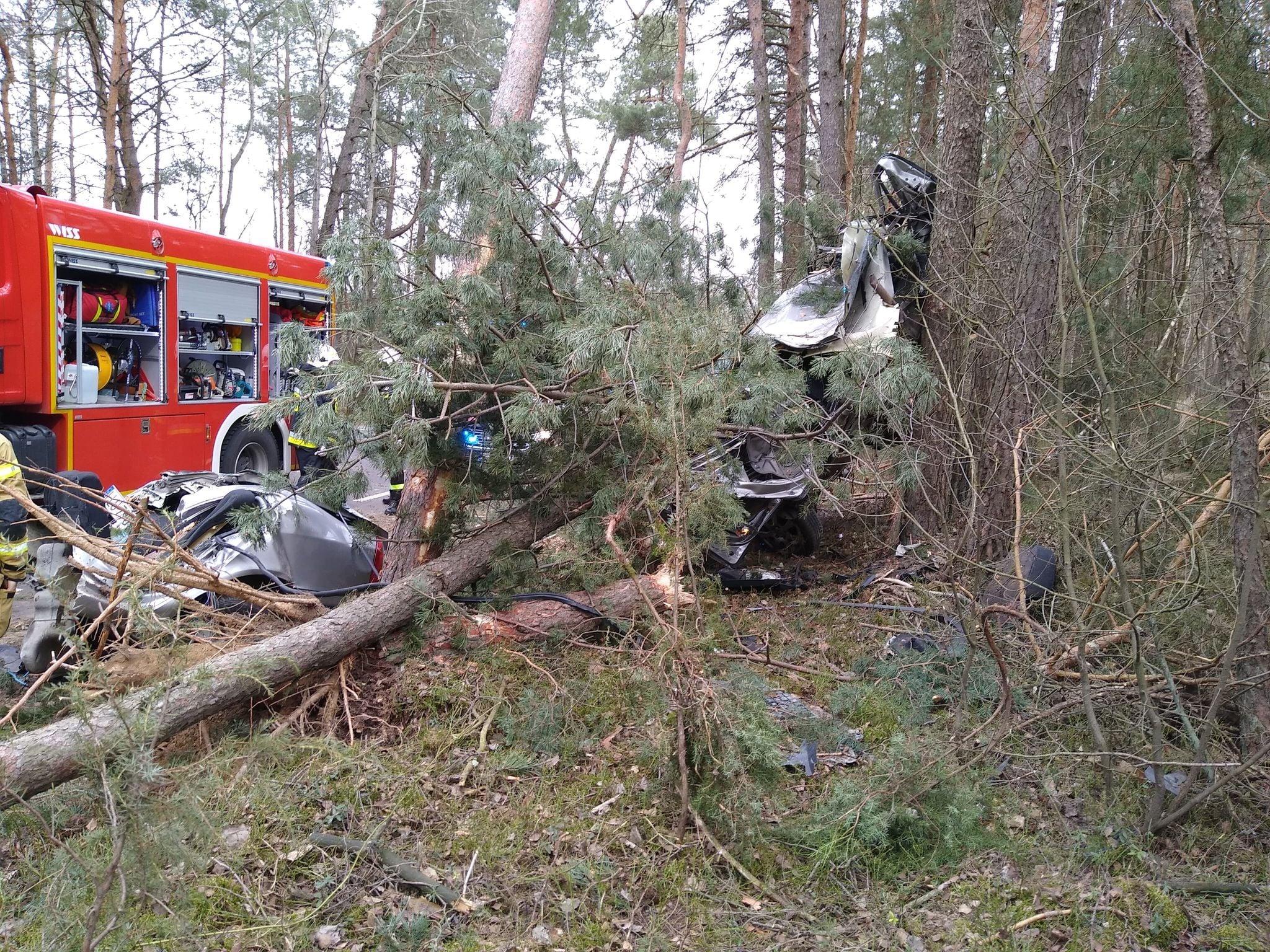KRZYWDA: Wypadek w Drożdżaku (ZDJĘCIA)  - Zdjęcie główne