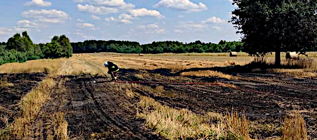 Pożar rżyska plagą tego lata  - Zdjęcie główne