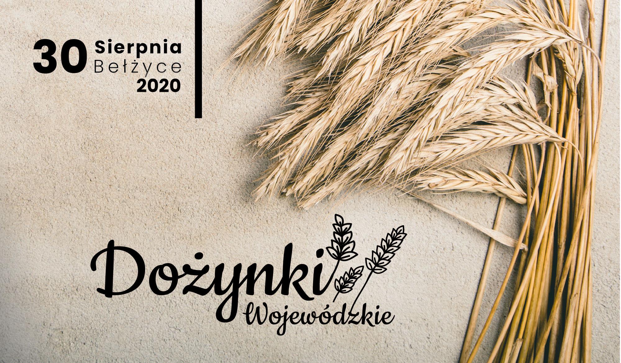 Dożynki Wojewódzkie 2020 w Bełżycach - Zdjęcie główne