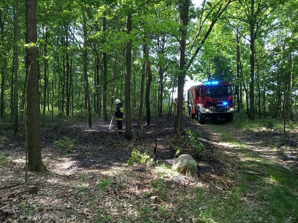 GM ŁUKÓW Paliło się poszycie leśna  - Zdjęcie główne