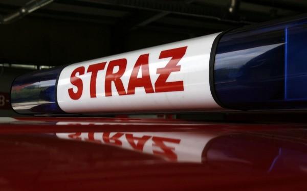 Stasin: Pożar samochodu osobowego - Zdjęcie główne