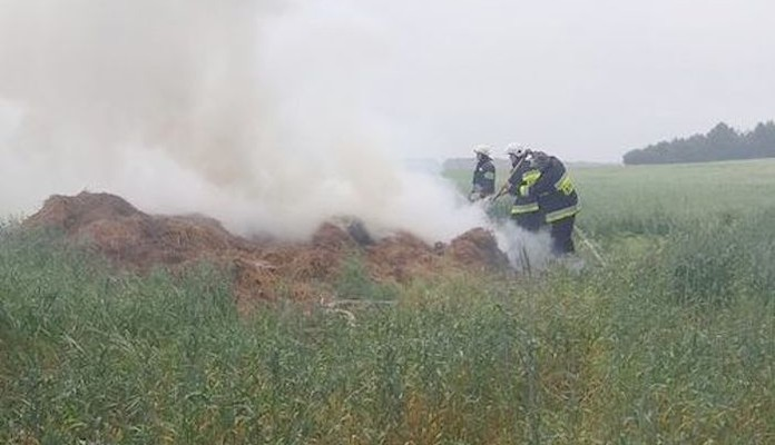 Pożar w miejscowości Łupiny - Zdjęcie główne