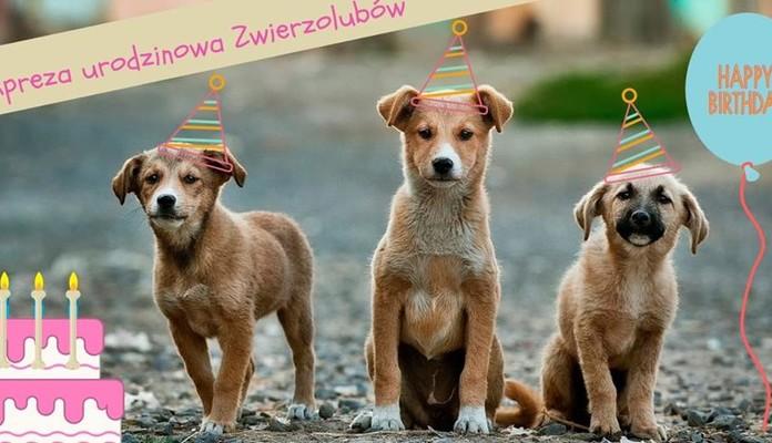 Pierwsze urodziny Zwierzolubów z Siedlec - Zdjęcie główne