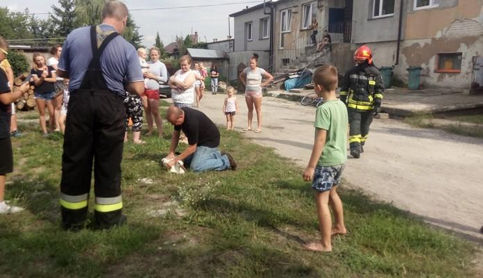 Bocian w kominie. Pomogli strażacy - Zdjęcie główne