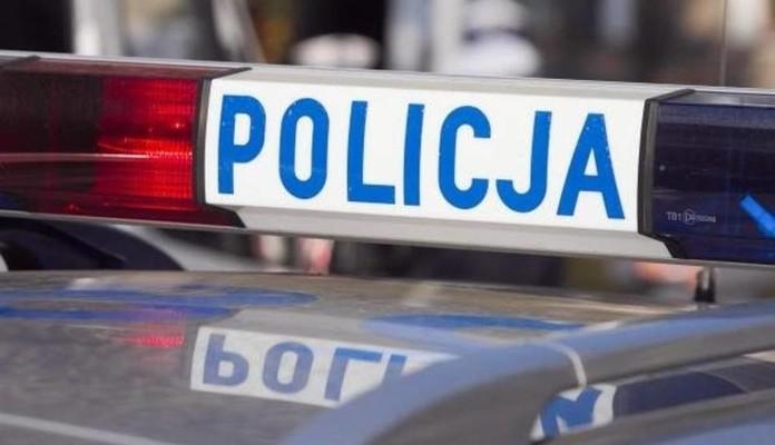 Gmina Kotuń: Kobieta potrąciła psa - Zdjęcie główne
