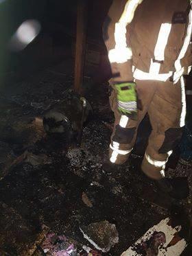 Skórzec: Zapaliło się poddasze - Zdjęcie główne