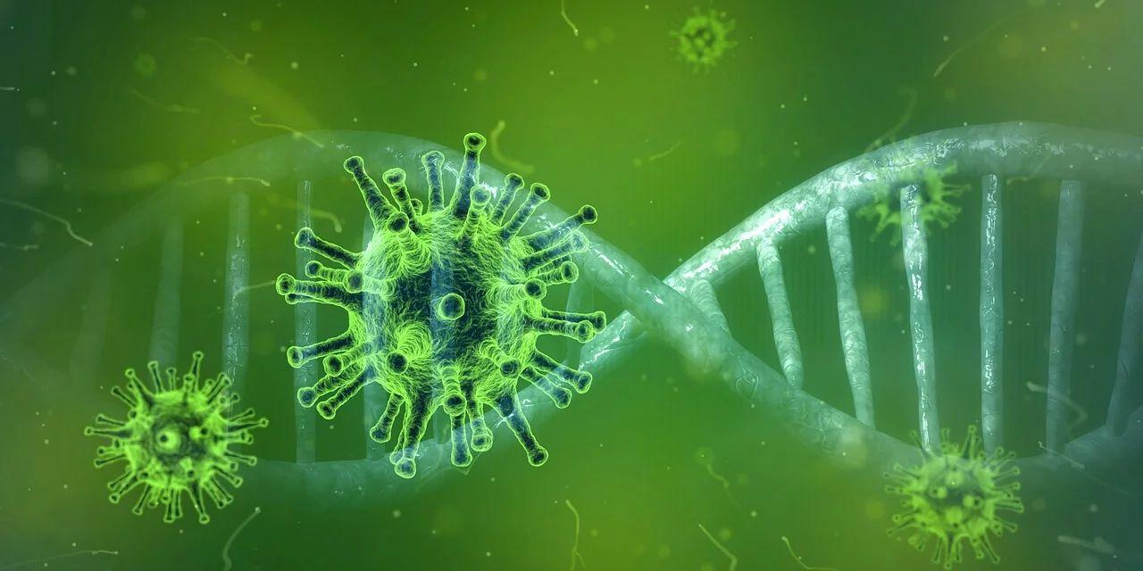 15 nowych przypadków koronawirusa w Lubelskiem - Zdjęcie główne