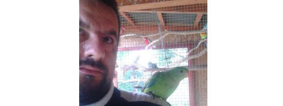 Ludwin: Tu rodzą się papugi! - Zdjęcie główne