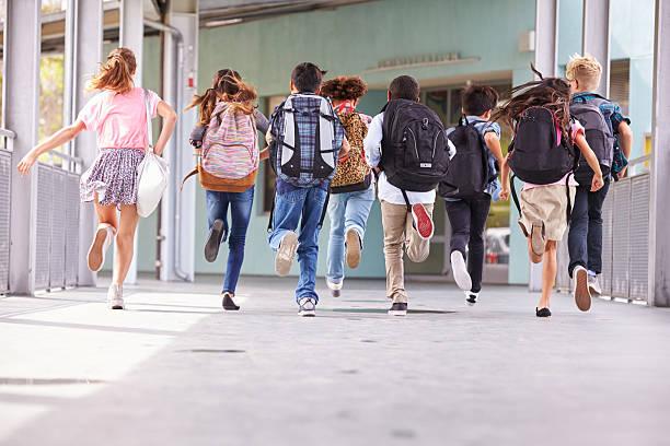 Województwo lubelskie: Żeby uczniowie nie mieli problemów z kręgosłupem. Są zalecenia w sprawie tornistrów - Zdjęcie główne